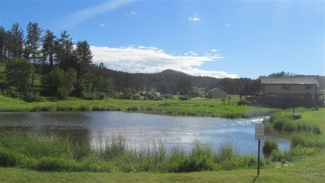 205 Minor Lake Circle, Hill City, SD 57745 (MLS #50790) :: Christians Team Real Estate, Inc.