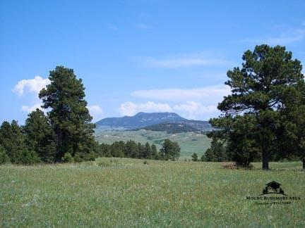 TBD Broad Axe Rd., Sundance, WY 82729 (MLS #51979) :: Christians Team Real Estate, Inc.