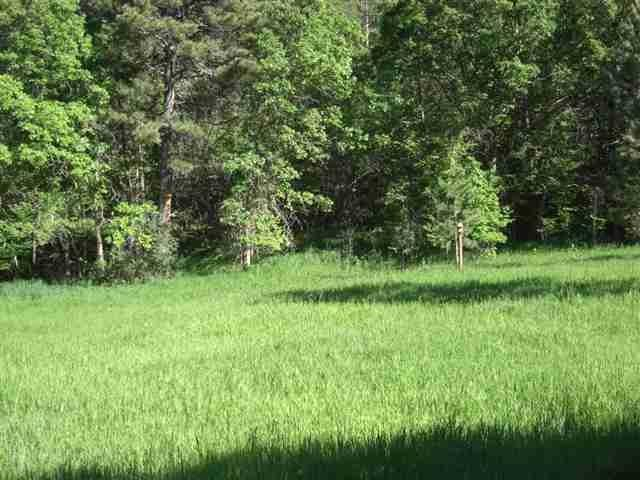Lot 9, Block 1 Whitewood Forest Acres, Whitewood, SD 57793 (MLS #53291) :: Christians Team Real Estate, Inc.