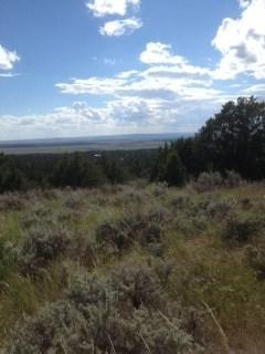 41 Durango Trail, Upton, WY 82730 (MLS #53373) :: Christians Team Real Estate, Inc.
