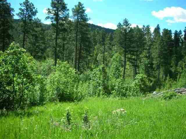 BUENA VISTA Highway 14A, Deadwood, SD 57732 (MLS #54153) :: Dupont Real Estate Inc.