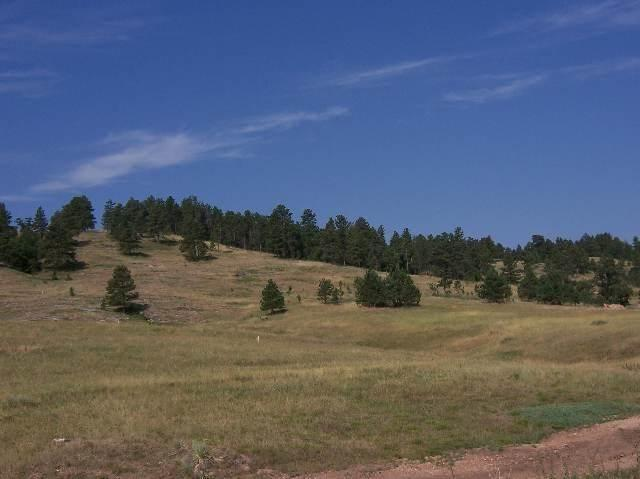 Lot 1 Hillsview Road, Spearfish, SD 57783 (MLS #55602) :: Christians Team Real Estate, Inc.
