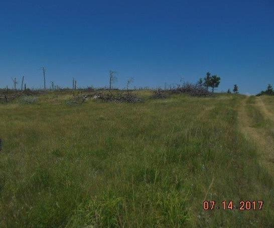 Tbd Black Hills Flyway Road, Hot Springs, SD 57747 (MLS #55763) :: Christians Team Real Estate, Inc.