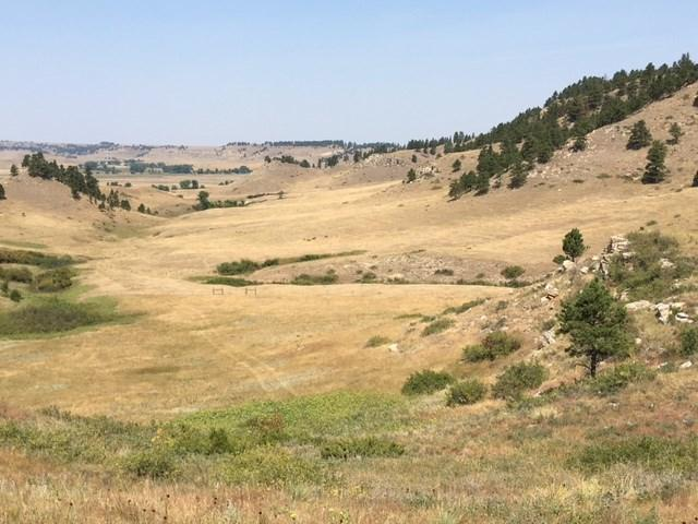 Lot 6 Hidden Valley Ranch, Belle Fourche, SD 57717 (MLS #55948) :: Christians Team Real Estate, Inc.