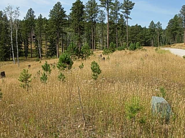 lot 23 Bogey Circle, Lead, SD 57754 (MLS #56070) :: Christians Team Real Estate, Inc.