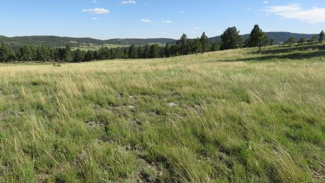 TBD Hot Brook Overlook, Hot Springs, SD 57747 (MLS #56239) :: Christians Team Real Estate, Inc.