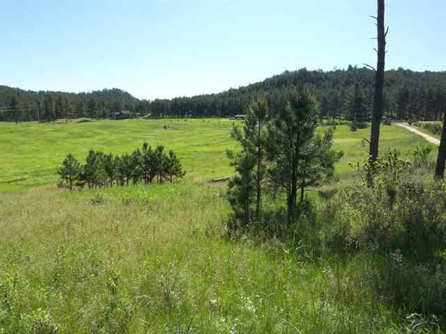 Lot 23 Bowman Ranch Subd., Custer County, SD 57730 (MLS #56451) :: Christians Team Real Estate, Inc.