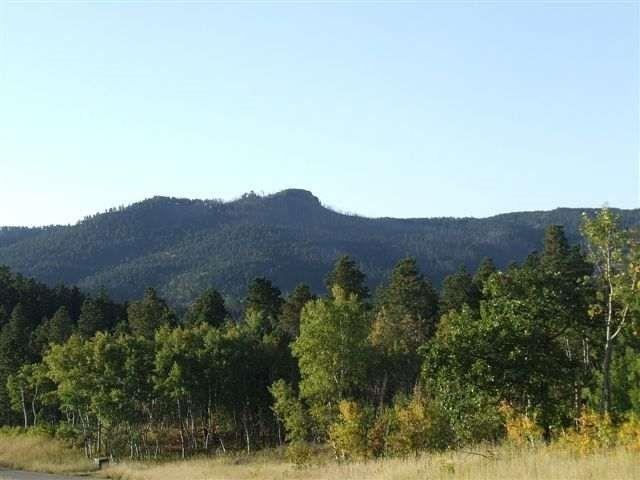 Lot 40 Tickelgrass, Deadwood, SD 57732 (MLS #56461) :: Christians Team Real Estate, Inc.