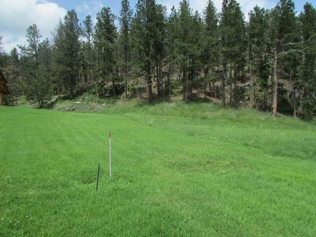134 Minor Lake Circle, Hill City, SD 57745 (MLS #57317) :: Christians Team Real Estate, Inc.
