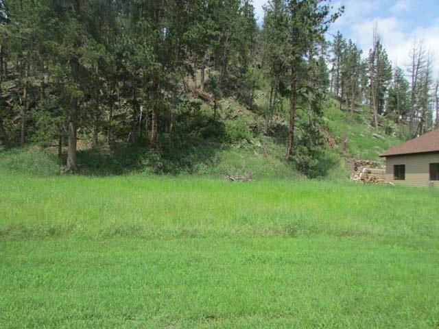 142 Minor Lake Circle, Hill City, SD 57745 (MLS #57318) :: Christians Team Real Estate, Inc.