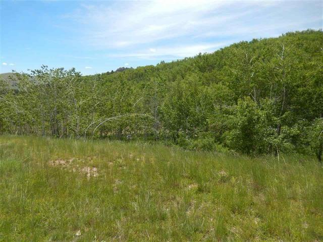 797 Stage Run Rd, Deadwood, SD 57732 (MLS #57616) :: Christians Team Real Estate, Inc.