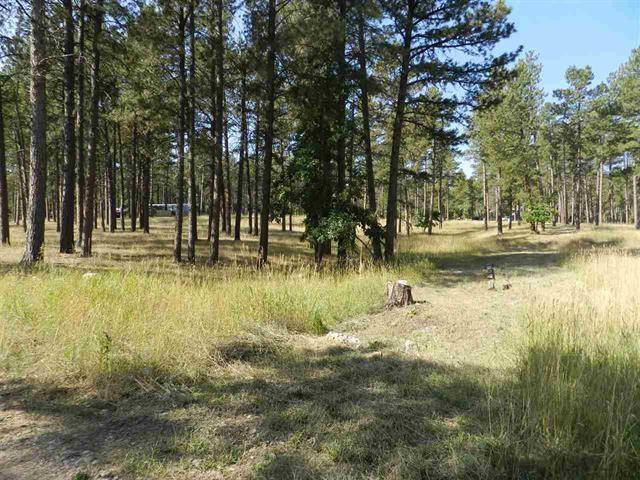 Lot 16B Storey Lane, Sturgis, SD 57785 (MLS #57995) :: Christians Team Real Estate, Inc.