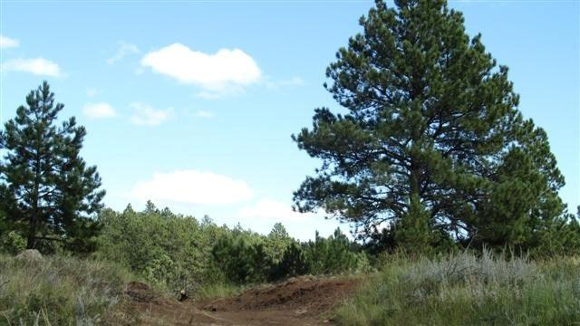 Schenk Rd. off Playhouse Rd., Keystone, SD 57751 (MLS #58099) :: Christians Team Real Estate, Inc.