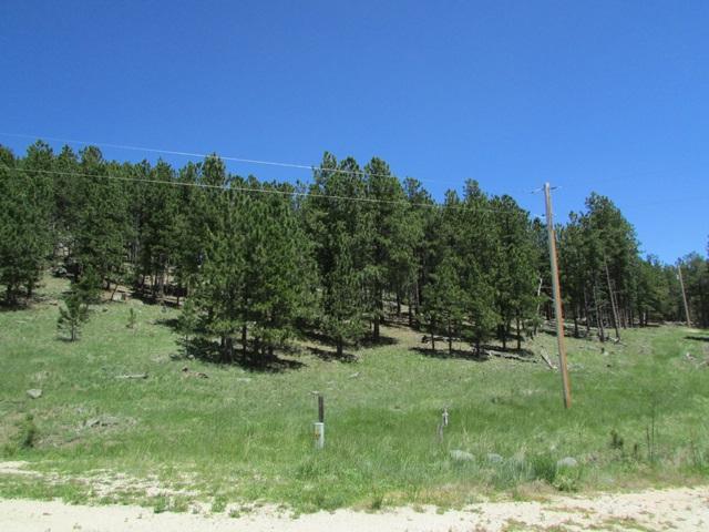TBD Pay Dirt Pass, Custer, SD 57730 (MLS #58469) :: Christians Team Real Estate, Inc.