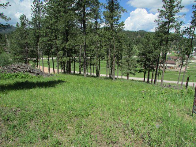TBD Placer Place, Hill City, SD 57745 (MLS #58733) :: Christians Team Real Estate, Inc.