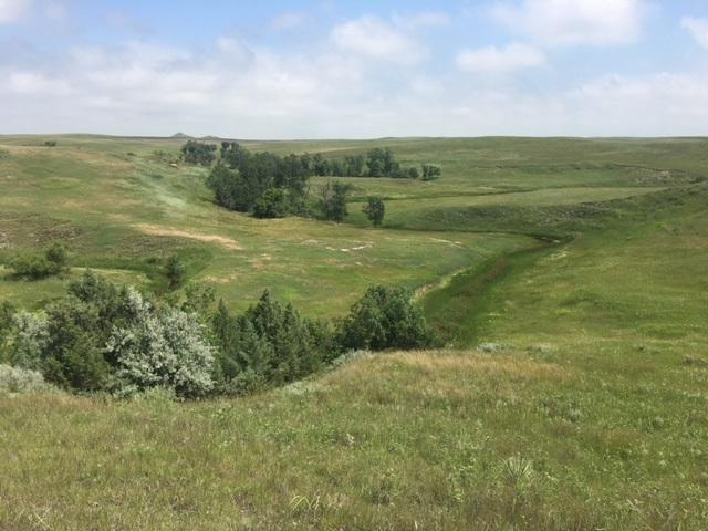 RR Johnson Rd, Newell, SD 57760 (MLS #58757) :: Christians Team Real Estate, Inc.