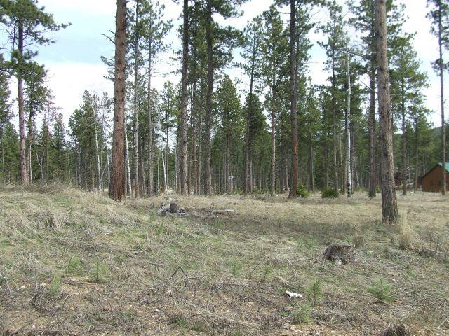 Lot 10 Grier Avenue, Lead, SD 57754 (MLS #58887) :: Christians Team Real Estate, Inc.