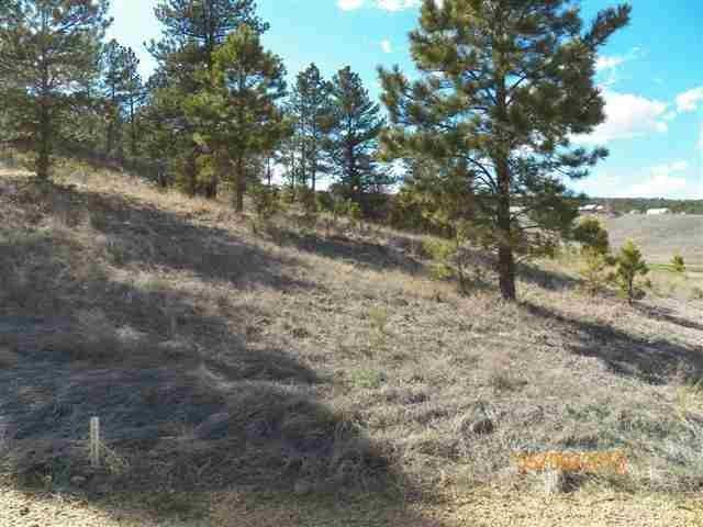2125 Bison Pass, Hot Springs, SD 57747 (MLS #59055) :: Christians Team Real Estate, Inc.