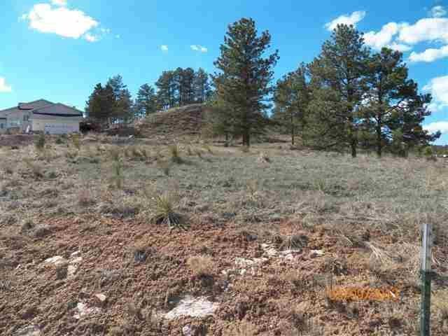 2111 Bison Pass, Hot Springs, SD 57747 (MLS #59057) :: Christians Team Real Estate, Inc.