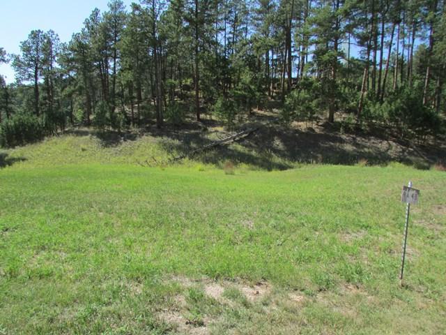 TBD Granite Point, Keystone, SD 57751 (MLS #60126) :: Dupont Real Estate Inc.