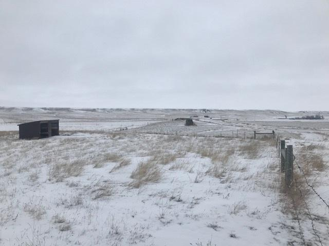 LOT 34 Rawhide Road, Whitewood, SD 57793 (MLS #60605) :: Christians Team Real Estate, Inc.