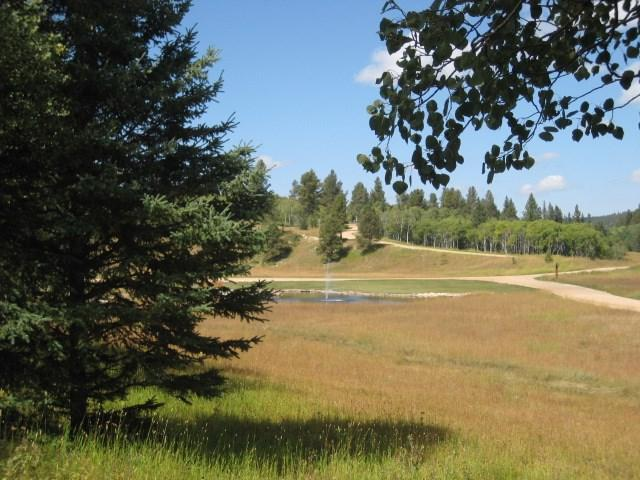 TBD Brook Trout Loop, Lead, SD 57754 (MLS #60628) :: Christians Team Real Estate, Inc.