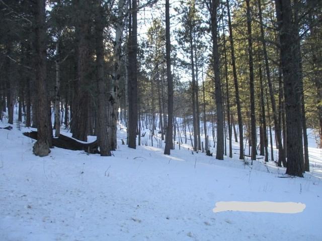 255 Brenner Pass, Rapid City, SD 57702 (MLS #60685) :: Christians Team Real Estate, Inc.