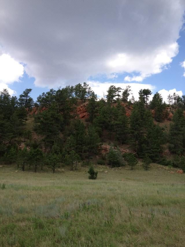 tbd Hell Canyon Rd, Custer, SD 57730 (MLS #60724) :: VIP Properties