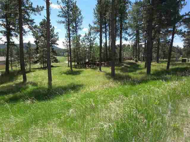124 Ox Yoke Ct., Custer, SD 57730 (MLS #60862) :: Christians Team Real Estate, Inc.