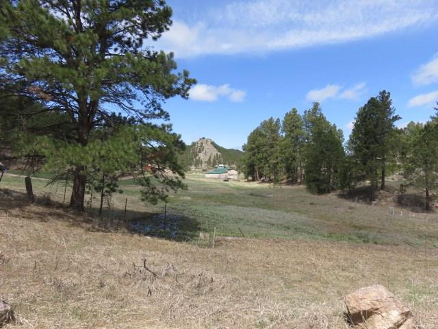 25984 Red Star Drive, Custer, SD 57730 (MLS #61156) :: Christians Team Real Estate, Inc.