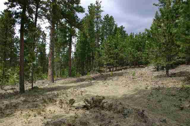 TBD Lot 46 Snowcat Road, Lead, SD 57754 (MLS #61213) :: Christians Team Real Estate, Inc.