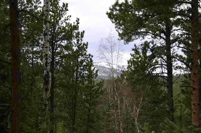 TBD Lot 47 Snowcat Road, Lead, SD 57754 (MLS #61214) :: Christians Team Real Estate, Inc.