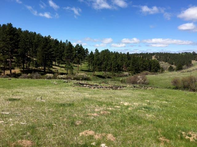 TBD Wakefield Rd., Sundance, WY 82729 (MLS #61474) :: Christians Team Real Estate, Inc.