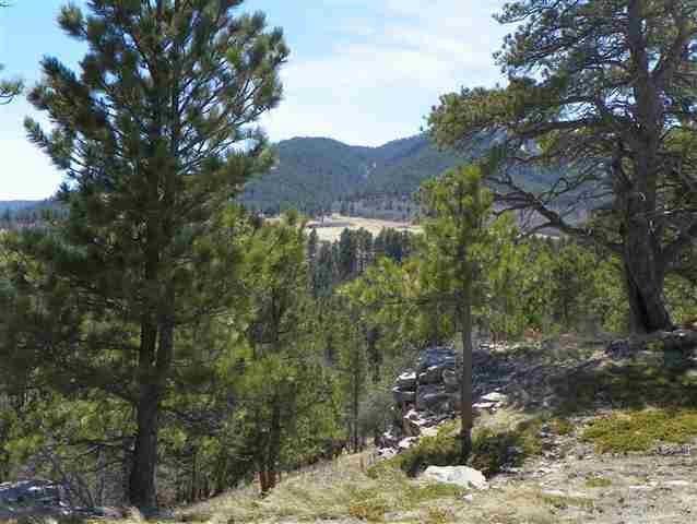 TBD Crow Peak Bench Road, Spearfish, SD 57783 (MLS #61629) :: VIP Properties