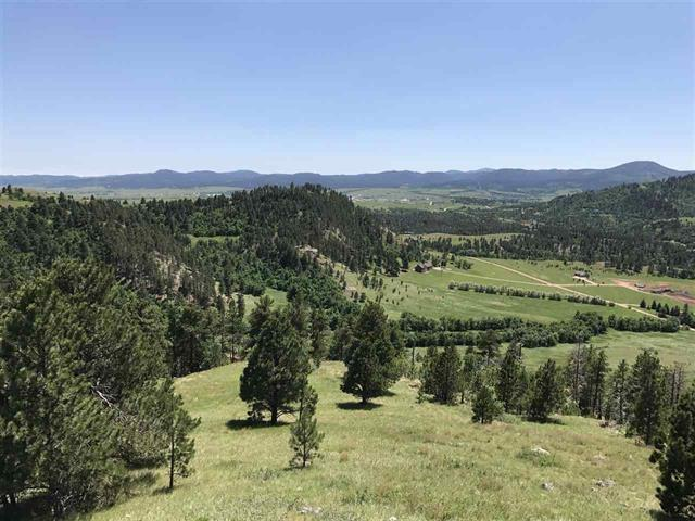 TBD Lookout Mt. Rd., Spearfish, SD 57783 (MLS #61717) :: Christians Team Real Estate, Inc.