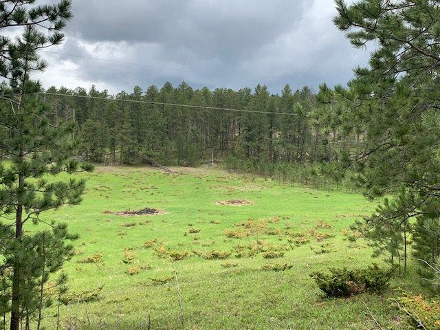 TBD Frosty Meadows Road, Lead, SD 57754 (MLS #61761) :: Christians Team Real Estate, Inc.