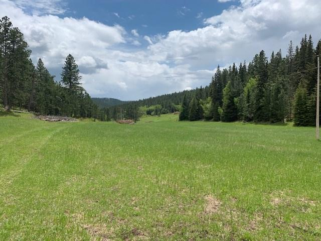 TBD Frosty Meadows Road, Lead, SD 57754 (MLS #61763) :: Christians Team Real Estate, Inc.