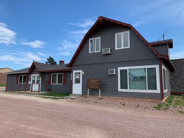 1164 Mt Rushmore Road, Custer, SD 57730 (MLS #62219) :: Christians Team Real Estate, Inc.