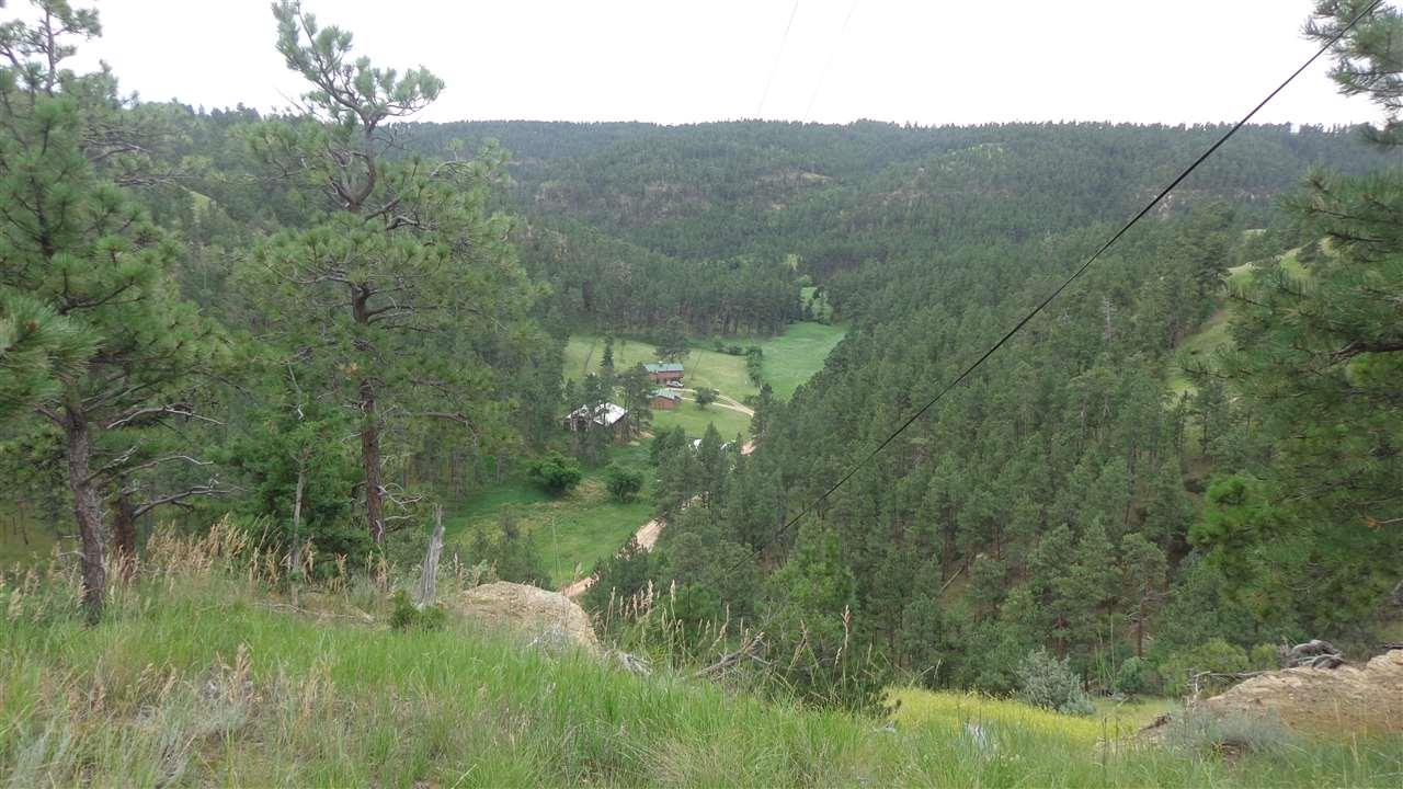 166 Thorn Divide Road - Photo 1
