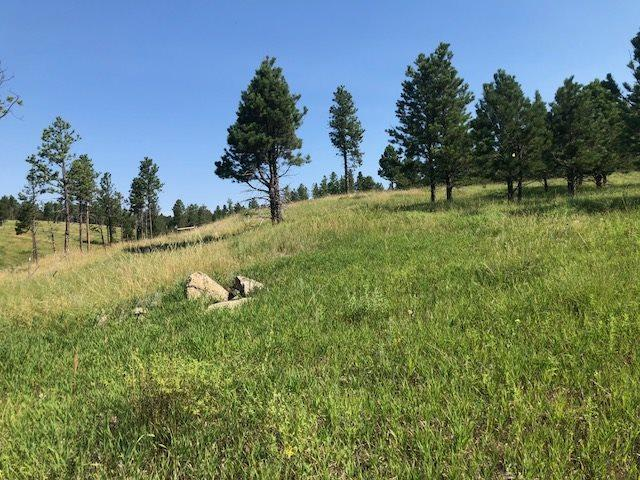 TBD Elisa St, Keystone, SD 57751 (MLS #62323) :: Christians Team Real Estate, Inc.