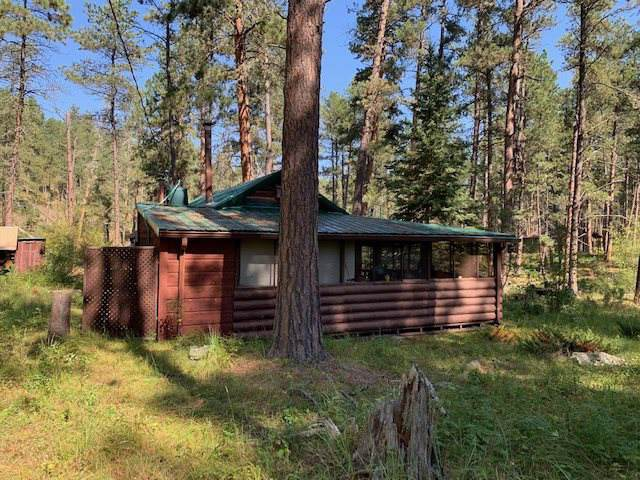 12780 Hazelrodt Picnic Area Road, Custer, SD 57730 (MLS #62751) :: Christians Team Real Estate, Inc.