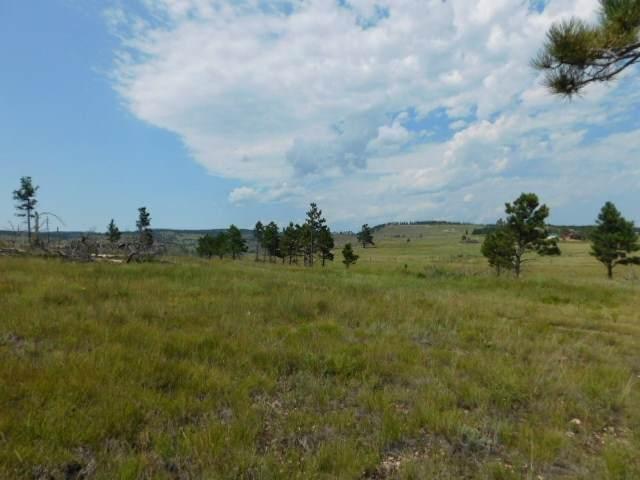 12461 Black Hills Flyway Road, Hot Springs, SD 57747 (MLS #62760) :: Dupont Real Estate Inc.