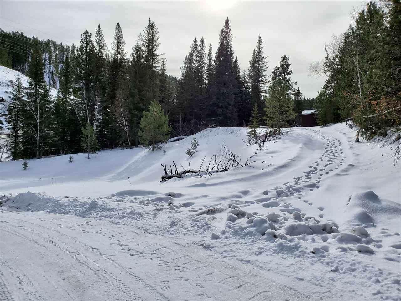 TBD Yellow Creek Road - Photo 1