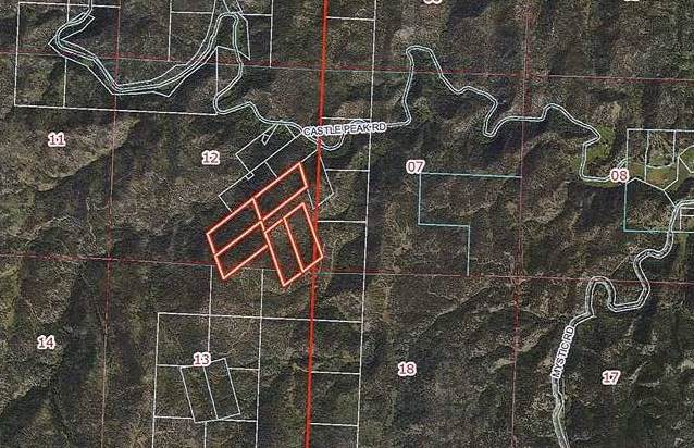 TBD Castle Peak Road Road, Hill City, SD 57745 (MLS #63403) :: VIP Properties