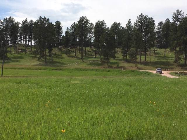 11895 Pleasant Valley Road, Custer, SD 57730 (MLS #63582) :: Dupont Real Estate Inc.