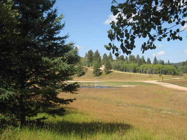 Lot 7 Address Not Published, Lead, SD 57754 (MLS #63799) :: Dupont Real Estate Inc.