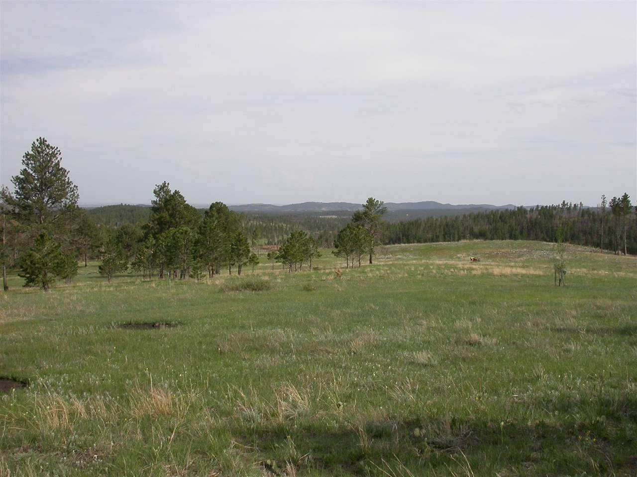 TBD Rushmore Ranch Road - Photo 1