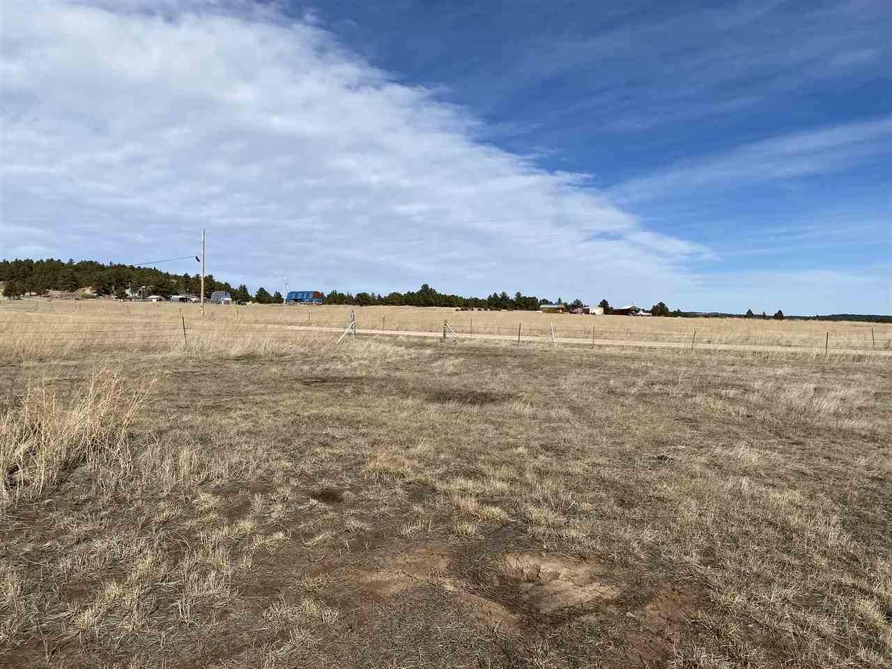 Lot 7 Block 6 Custer Highlands - Photo 1