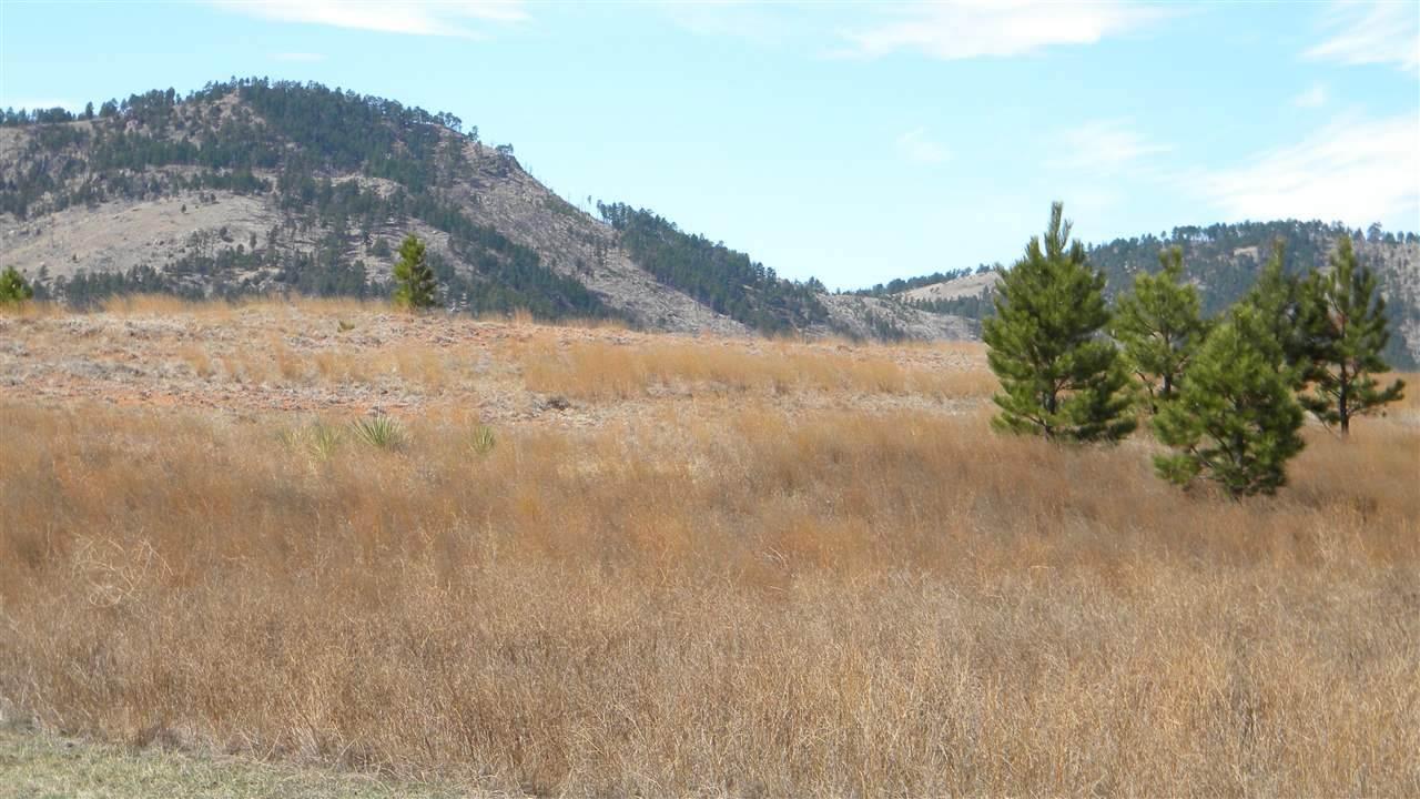 Tr 67 & 68 Mountain Drive - Photo 1