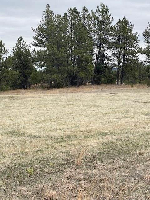 TBD Darlene Court, Hot Springs, SD 57747 (MLS #64320) :: VIP Properties